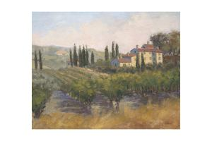 Tuscan Moment 2 by Jill Schultz McGannon