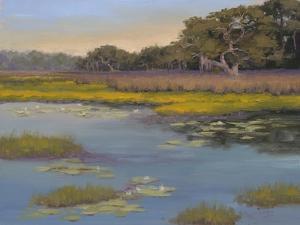 Waterlily Bay by Jill Schultz McGannon