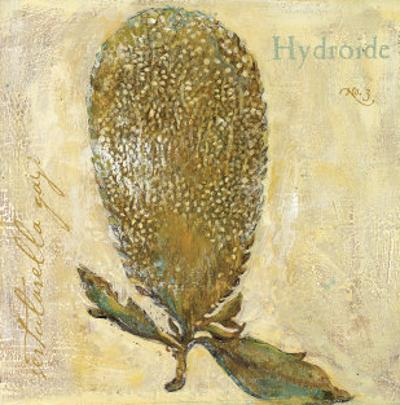 Hydroide