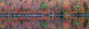 Upson Lake Reflection by Jim Becia
