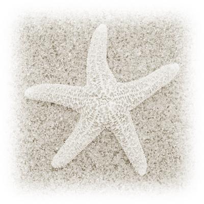 In the Sand V