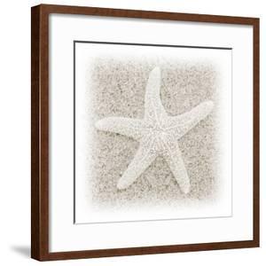 In the Sand V by Jim Christensen