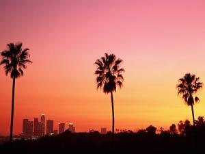 Usa, California, Los Angeles, Skyline and Palm Trees at Sunset by Jim Corwin