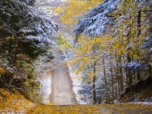 Rural road after snow by Jim Craigmyle