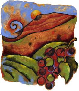 Vineyard by Jim Dryden