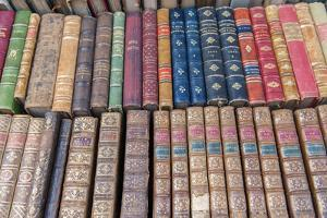Antique French books, Dijon, Burgundy, France by Jim Engelbrecht