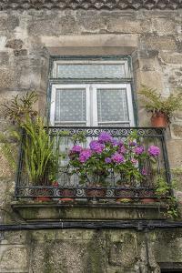 Portugal, Guimaraes, Flowers on Balcony Outside Window by Jim Engelbrecht