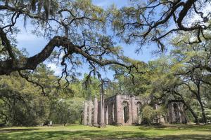 South Carolina, Beaufort County, Old Sheldon Church by Jim Engelbrecht