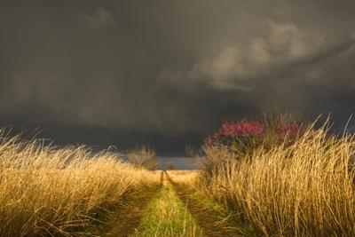A Colorful Rural Road Leads Toward a Storm by Jim Reed