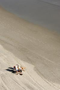 A Couple Relax While Reading Newspapers at the Beach by Jim Reed