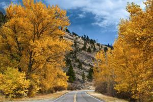 A Deserted Road and Picturesque Autumn Landscape by Jim Reed