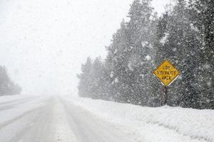 A Low Visibility Area Highway Sign During a Snowstorm by Jim Reed