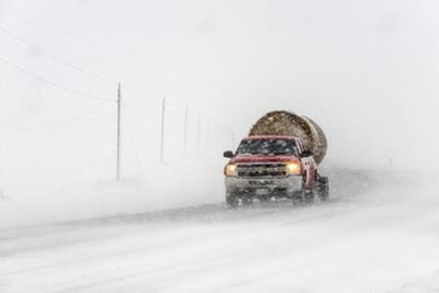 A Pickup Truck Pulling Hay Bales Drives Through Blizzard Conditions by Jim Reed