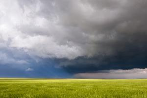 A Supercell Thunderstorm Rotates over a Field by Jim Reed