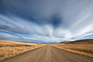 An Uninhabited Gravel Road and Picturesque Landscape by Jim Reed