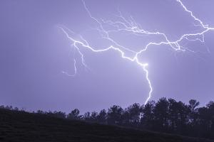 Lightning Wriggles across the Sky and Strikes the Ground by Jim Reed