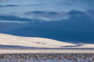Storm over a Winter Landscape by Jim Reed