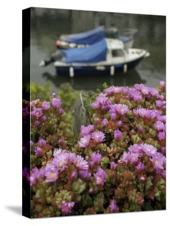 In Polperro, a Small Fishing Village, on the South Coast of Cornwall