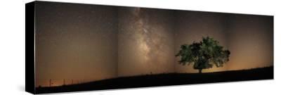 Stars shine brightly above the Tallgrass Prairie Preserve