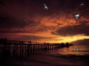 Sunset, Naples Pier by Jim Schwabel