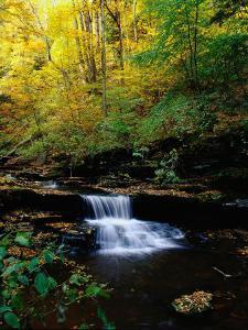 Waterfalls, Ricketts Glen State PArk, PA by Jim Schwabel