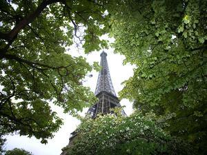 Detail of Eiffel Tower, Paris, France by Jim Zuckerman