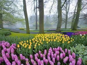 Spring Flowers in Flower Garden by Jim Zuckerman