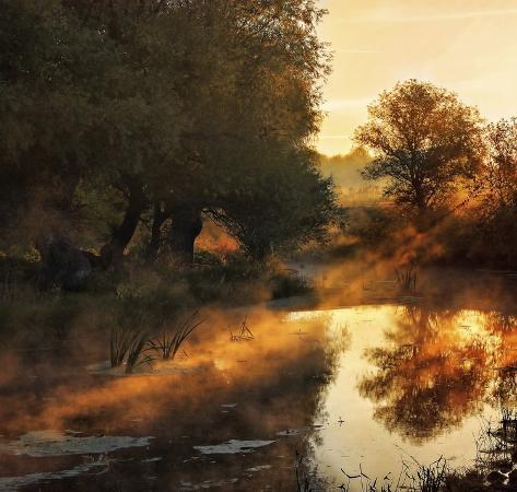 jimbi-when-nature-paints-with-light
