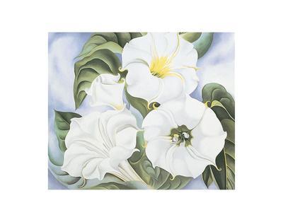 https://imgc.artprintimages.com/img/print/jimson-weed-c-1935_u-l-f54ag80.jpg?p=0