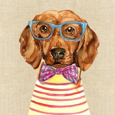 Dachshund with Fashion Glasses