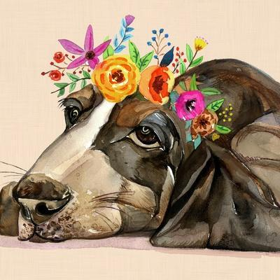 Dog With A Wreath Of Colorful Blossoms 11