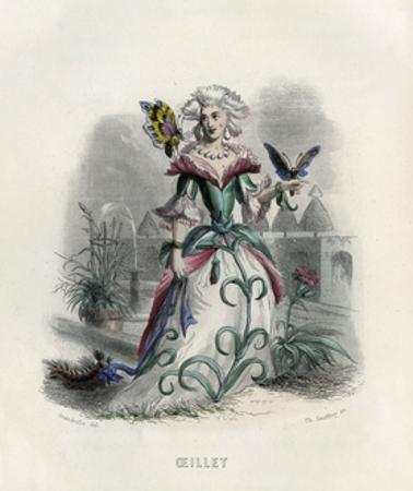 Grandville Carnation