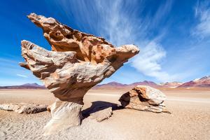 Arbol De Piedra in Bolivia by jkraft5