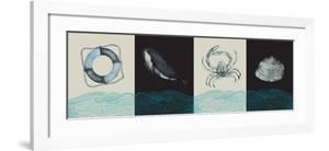 Nautical Pattern by JMB Designs