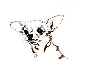 Big Ears the Chihuahua, 2012 by Jo Chambers
