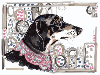 Lacey the Dachshund, 2013