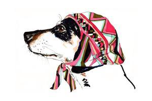 Pooch in Pucci, 2012 by Jo Chambers