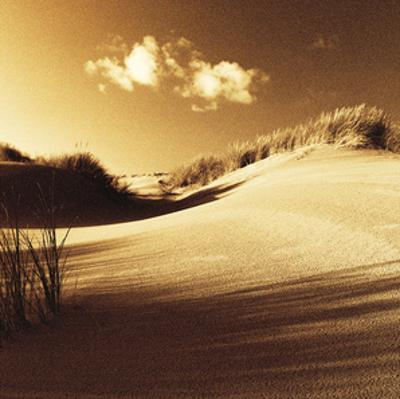 Drifting Sands IV