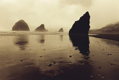 The Reflecting Tide