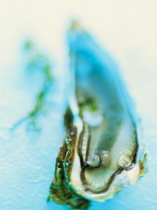 Fresh Oyster with Pearl by Jo Kirchherr