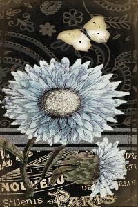 Chrysanthemum by Jo Moulton