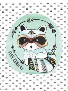 Curious Raccoon by Jo Moulton