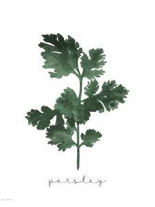 Parsley by Jo Moulton