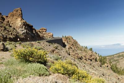 National Park el Teide, Caldera de las Canadas, Tenerife, Canary Islands, Spain