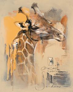 Wildlife Giraffe by Joadoor