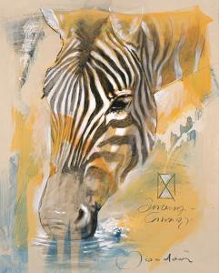 Wildlife Zebra by Joadoor