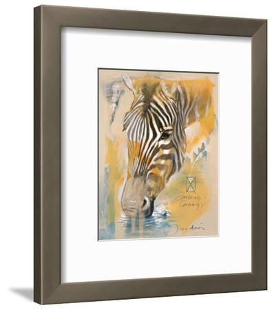 Wildlife Zebra