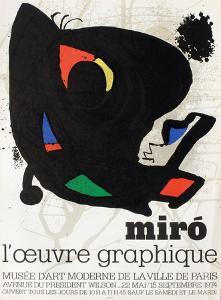 Musee Dart Moderne by Joan Miro