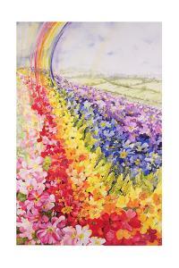 Primrose Rainbow by Joan Thewsey