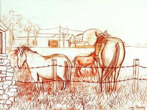 Serenade,Janie and a Donkey in the Meadow, 2000 by Joan Thewsey